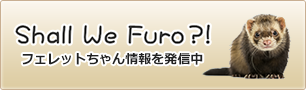 Shall We Furo?! フェレットちゃん情報を発信中