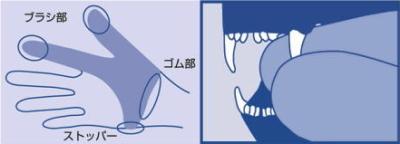 猫用ゆび歯ぶらし